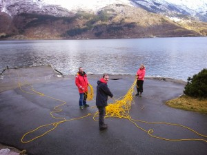 Untangling the 225m tether before a deep dive wit the ROV